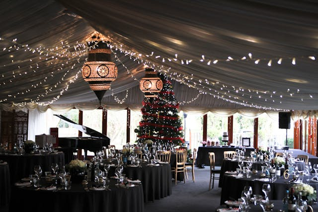 stirling photography 27 - Christmas Party Theme Ideas