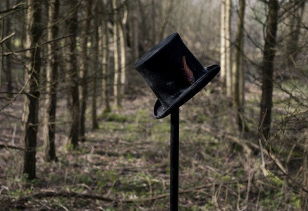 Top hat in the woods by Halo and Hobby
