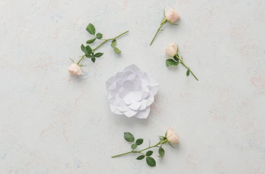 Paper Flower Decor - Apple Blossom | Confetti.co.uk