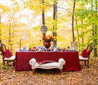Autumn Wedding Theme from Confetti.co.uk