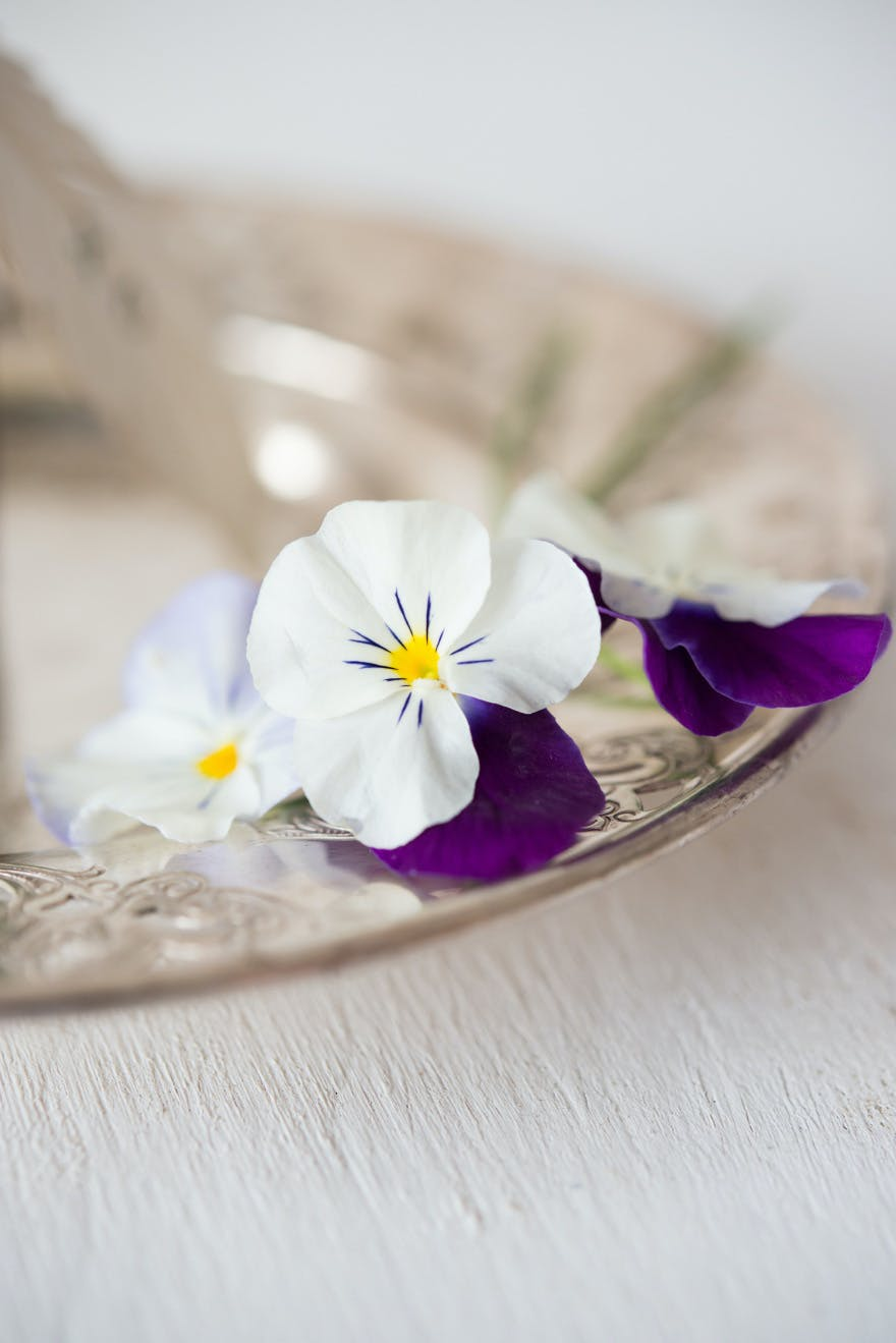 White and Purple Pansies | Confetti.co.uk