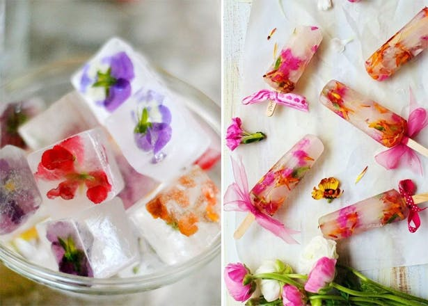 Ice Cubes and Ice Lollies | Confetti.co.uk