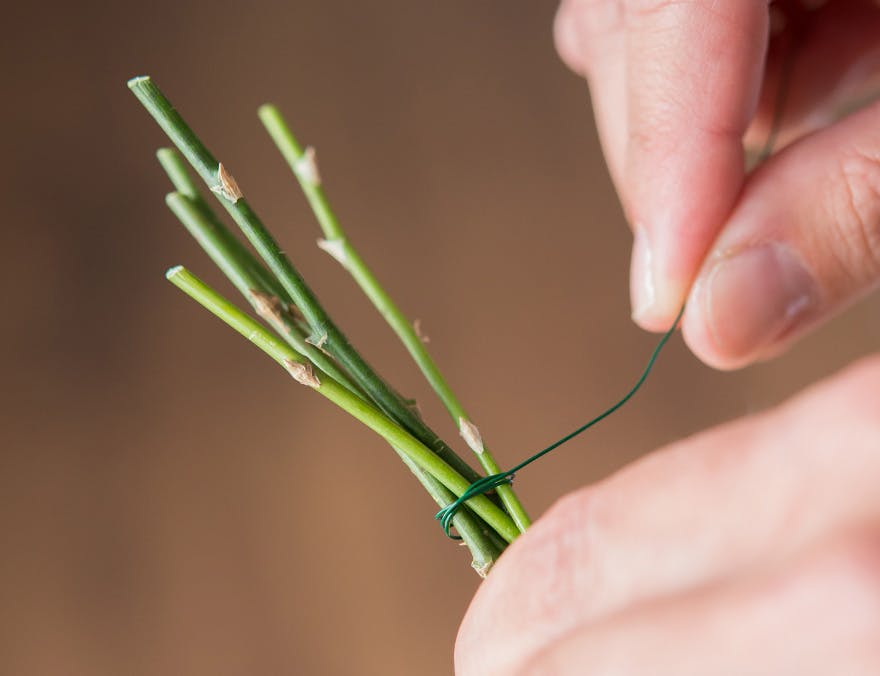 DIY Plants Tie Stems With Wire | Confetti.co.uk