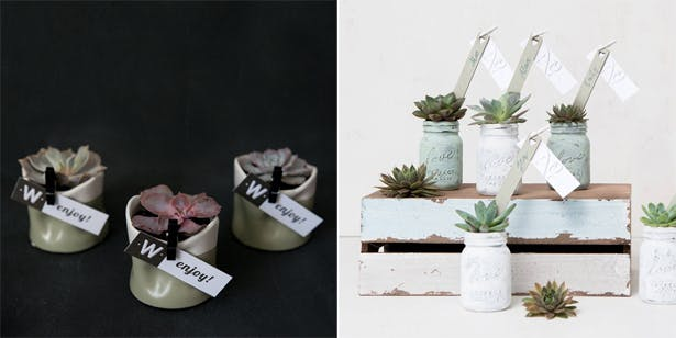 DIY Potted Plants | Confetti.co.uk