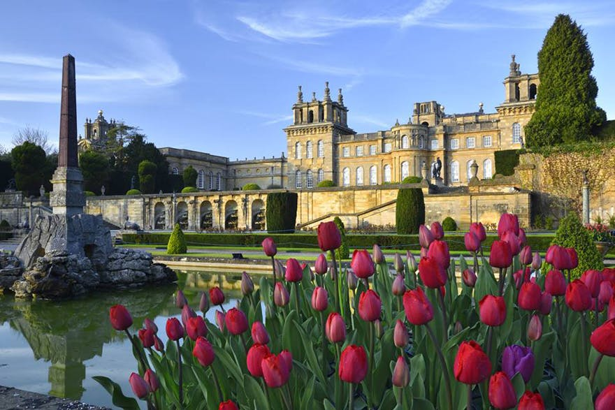 Blenheim Palace Historic House and Gardens and World Heritage Site in Woodstock, Oxfordshire - Blenheim Palace in Spring with Red Tulips Photography by Pete Seaward | Confetti.co.uk