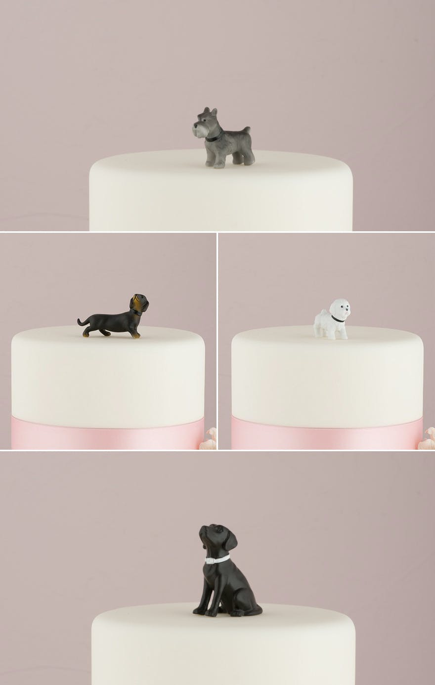 Pet Cake Toppers - Dog Cake Toppers - Miniature Terrier Dog Figurine, Labrador Figurine, Black and Tan Dachshund Figurine, and Bichon Frise Figurines   Confetti.co.uk