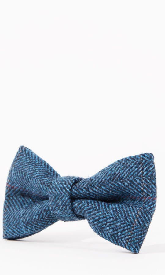 Marc Darcy Accessories Blue Dion Bow Tie