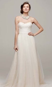 David's Bridal Hall of Fame 2015 WG3586 #21