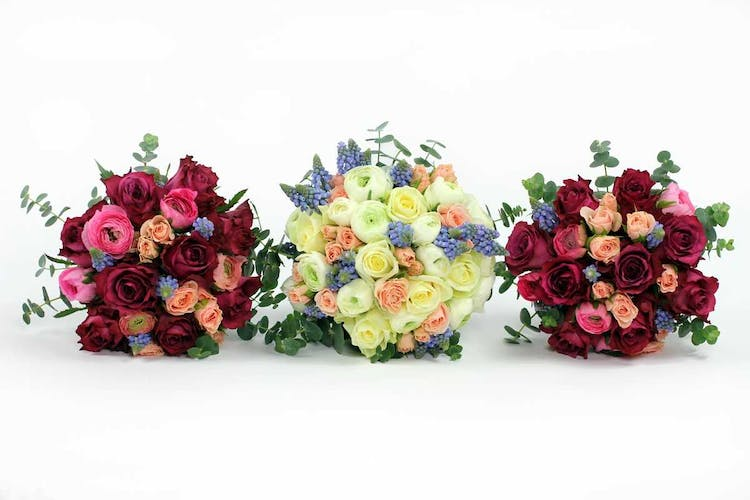 Todich Floral Design Ltd