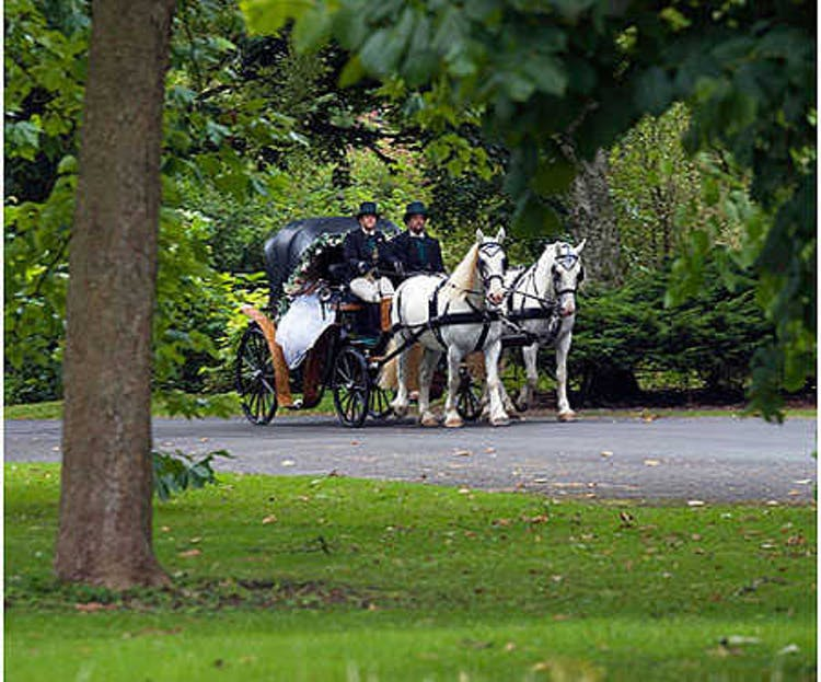 The Horse Drawn Carriage Company