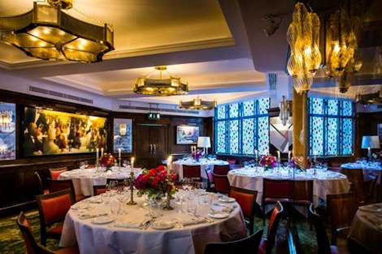 The Ivy