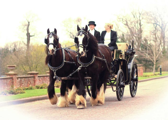 Jump Up Carriage Hire