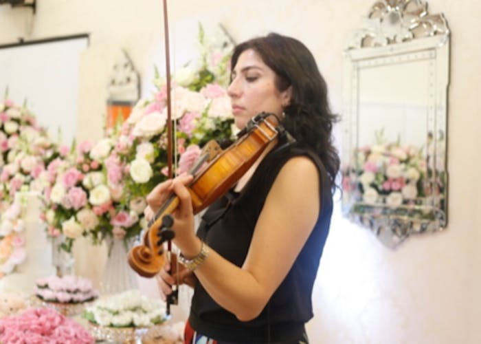 The Violin Expert