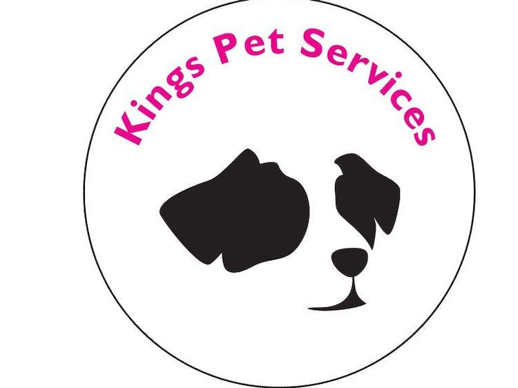 Kings Pet Services Dog Chaperone