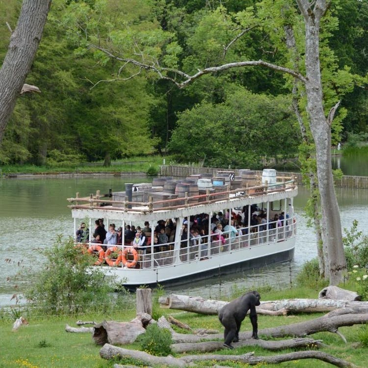 Take your guests on the Jungle Cruise as part of your wedding day at Longleat